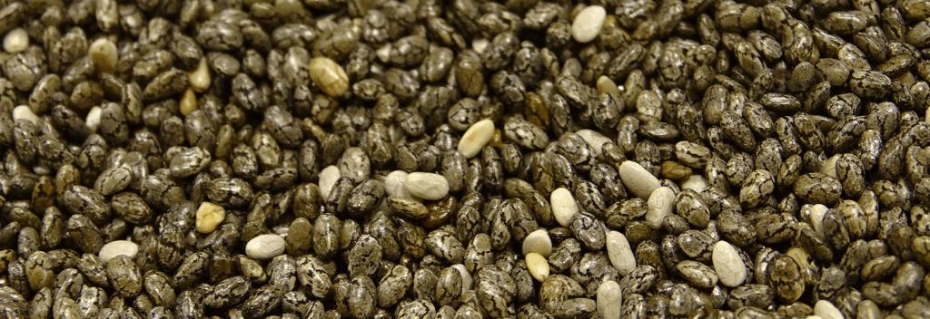 nasiona chia z bliska